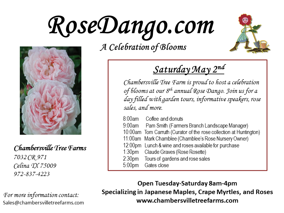 The 8th Annual RoseDango Celebration